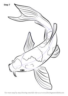 Step by Step How to Draw a Koi Fish : DrawingTutorials101.com