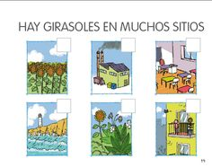 Los infantes del Blas: SEGUIMOS APRENDIENDO COSAS SOBRE LOS GIRASOLES Y PLANTAS