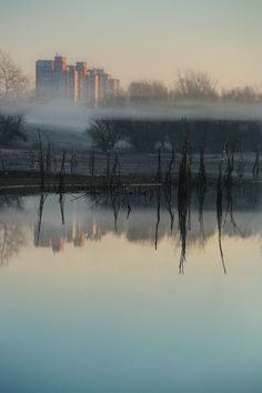 Reflection of progress Photo by Dejan Kolar — National Geographic Your Shot