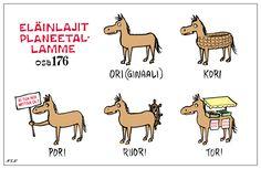 Eläinsanasto | NEN sarjakuvat Finnish Words, Finnish Language, Puns, Finland, I Laughed, Beautiful Pictures, Jokes, Cartoon, Comics