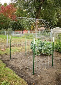 Make an Eye-Catching Bean Trellis for Your Garden : DIY Bean Trellis Bean plants climb and cover anything in their path, but can sometimes look messy and tangled. Try making this arched bean trellis for your garden… Garden Arbor, Veg Garden, Vegetable Garden Design, Small Garden Design, Garden Trellis, Diy Trellis, Vegetable Gardening, Trellis Ideas, Veggie Gardens