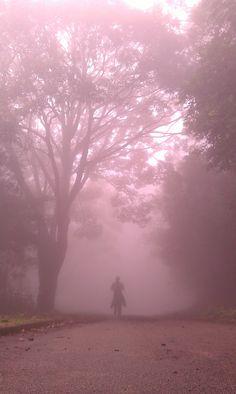 Lost in mist