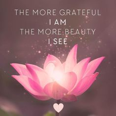 The more grateful I am, the more beauty I see