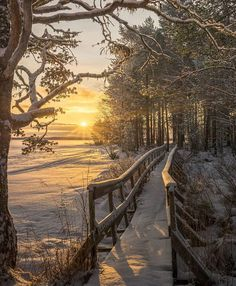 ✿ ❤ Sunrise in winter. Winter Sunset, Winter Scenery, Winter Love, Winter Wonder, Winter Snow, Beautiful Sunset, Beautiful World, Winter Photography, Nature Photography