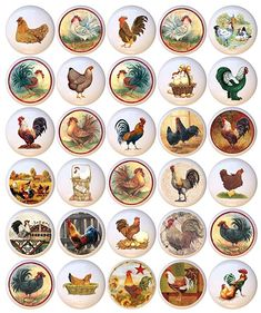 Dresser Drawer Knobs, Cupboard Knobs, Drawer Pulls, Cabinet, Chickens And Roosters, Furniture Knobs, Closet Doors, Cleaning Wipes, Decorative Plates