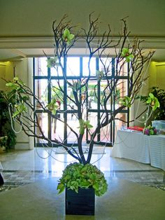Get expert wedding planning advice and find the best ideas for wedding decorations, wedding flowers, wedding cakes, wedding songs, and more. Tree Branch Centerpieces, Tree Decorations, Wedding Decorations, Rama Seca, Manzanita Tree, Church Flowers, Dyi Crafts, Arte Floral, Flowering Trees