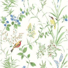 With a watercolor style, this botanical wallpaper has a chinoiserie flair. Orange blossoms, blue berries and shy songbirds make up its nature inspired design. Imperial Garden is a prepasted, non woven wallpaper. Plant Wallpaper, Botanical Wallpaper, Green Wallpaper, Wallpaper Roll, Bright Wallpaper, Trellis Wallpaper, Metallic Wallpaper, Brewster Wallpaper, Woodland Flowers