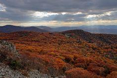 Shenandoah: Shafts   Flickr - Photo Sharing! Shenandoah National Park, Stony, Virginia, National Parks, Mountains, Photo And Video, Pictures, Travel, Photos