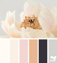 Flora Tones | Design Seeds