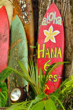 Surfboards, Hawaii