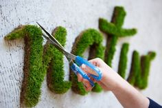 DIY: Ekologický street art – neuvěřitelné rostoucí graffiti z mechu!
