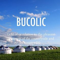 Bucolic |byo͞oˈkälik| early 16th century via Latin from Greek origin #beautifulwords #wordoftheday #NeiMongol #InnerMongolia #China