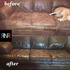 Conditioning Primer & Sealer for Leather Upholstery & Marine Vinyl