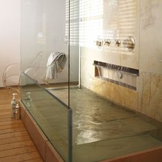 Wow! I have never seen a glass shower & tub like this!  I love it!