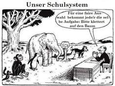 Schule und Gleichheit