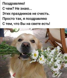 Фотографии Натальи Маминовой