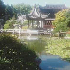 Lan Su #Chinese #Gardens in #Portland, translated as Garden of awakening orchids. #nowyouknow #beautiful #scenery #landscape #water #pond #stunning #peaceful #tranquility #inspiration  - theculturemag via Instagram