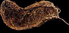 Random Weave Rosemary Rib Basket Vessel by Mark Hendry for Organic Artist Tree