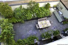 Urban plant lovers kitchen garden
