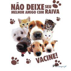 Celebra-se hoje o Dia Mundial da Raiva! SABIA QUE... ... A doença considera-se erradicada em Portugal desde 1956? ... Só a vacinação prévia pode salvar o homem contra esta doença? ... A raiva mata uma pessoa no mundo de 10 em 10 minutos, sobretudo crianças até aos 15 anos (60% das vítimas)? www.missagio.pt #missagioonline #saúdebemestar #beleza #desporto #nutrição