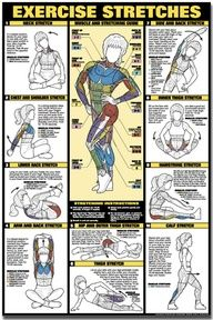 EXERCISE STRETCHES