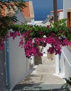 Greece, Sidewalk, Walkway, Grease, Walkways