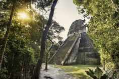 Built around 700 AD, the 57 metre high pyramid of Temple V in Tikal was one of the tallest and most voluminous buildings in the Maya world.