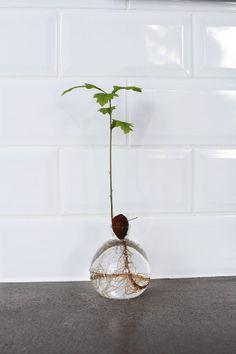 """""""Ekollon vase"""" from """"Svenskt tenn"""". Gingerbreadhouse   Inredning och lifestyle inredningsblogg Sköna hem"""