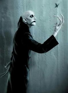 See ASP pictures, photo shoots, and listen online to the latest music. Frankenstein, Gothic Bands, Vampire Art, World Of Darkness, Creepy Art, Scary, Gothic Art, Gothic Images, Gothic Rock