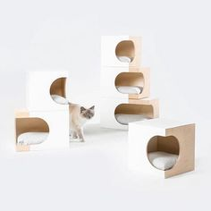 LUNARBOX: A Cat Home That Will Work with the Design of Your Home LUNARBOX is a welcome deviation from the standard cat furniture and trees by turning it into a modern design object for your home. Cat Design, Animal Design, House Design, Pet Beds, Dog Bed, Dog Furniture, Modern Cat Furniture, Furniture Buyers, Classic Furniture
