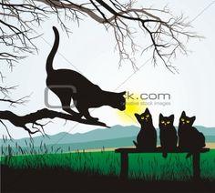 Cat school jumping