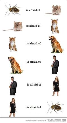 The circle of fear…