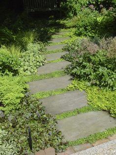 Textures of green garden path.
