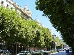 Avenida Libertad - San Sebastián - Guipuzcoa