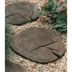 concrete faux bois stepping stones - Stonemarket - Timberstone - Coppice Brown - Log Stepping Stone