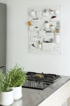 Kitchen organizer