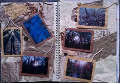 Some of my own photos of Order and Disorder in the natural world Sketchbook Layout, Gcse Art Sketchbook, Sketchbook Inspiration, Sketchbooks, Photography Sketchbook, Photo Layouts, Natural Forms, Journals, Identity