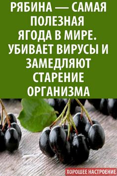 Blueberry, Fruit, Health, Quotes, Food, Herbal Medicine, Food And Drinks, Quotations, Berry