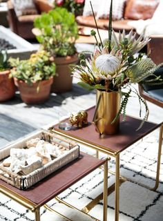 A Lunch with Nate Berkus and Target   Rue