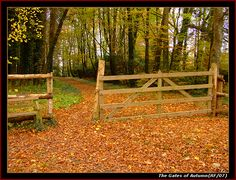 Google Image Result for http://files.myopera.com/sprogger/albums/362988/The%2520Gates%2520of%2520autumn.png