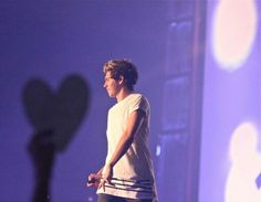 One Direction on stage in St. Louis (27/08/2014) #WWAT