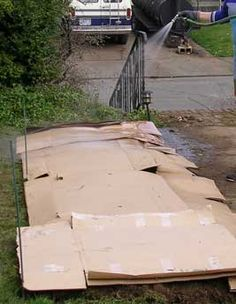 Use cardboard to suppress weeds