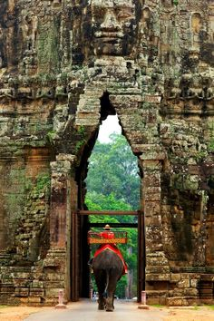 cambodia.  GOING!  but will not ride an elephant and support animal tourism