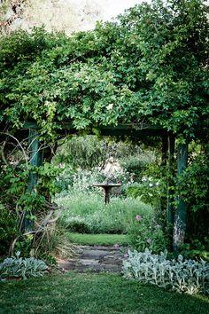 Interior garden opens up to exterior garden