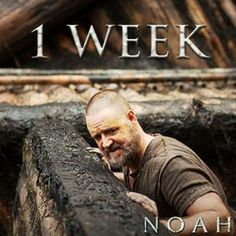 Noah Movie @noahfilm Instagram photos | Webstagram