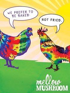 parrot in the oven quotes