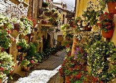 Finestre, balconi e vicoli fioriti