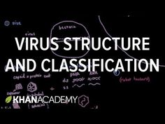Virus structure and classification | Viruses | Cells | MCAT | Khan Academy