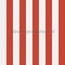 Streep rood wit behang Rasch alle afbeeldingen