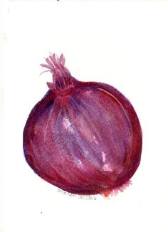 Purple Onion  Painting Watercolor Vegetable by SharonFosterArt, $8.00